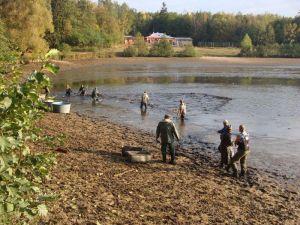 Zájem o ryby z hradeckých lesů roste